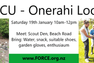 Image for event: Clean Up Onerahi Lookout