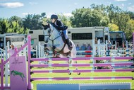 Image for event: Jump For Cancer Hagley