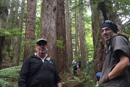 Image for event: Redwood Ramble