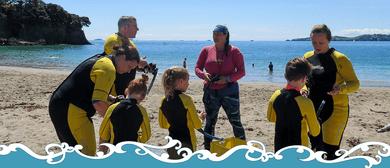 Motuihe Snorkel Day
