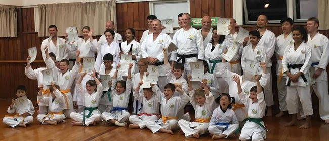 Karate Classes for All Ages 9+