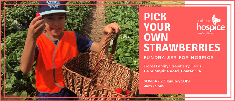 Pick Your Own Troost Strawberries for Hospice