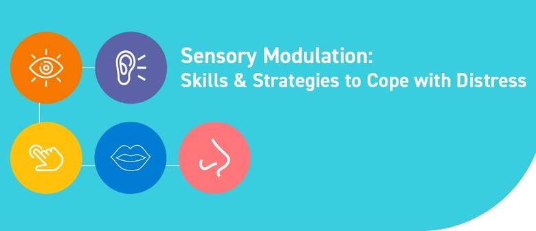 Sensory Modulation