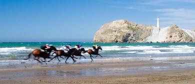 Castlepoint Races