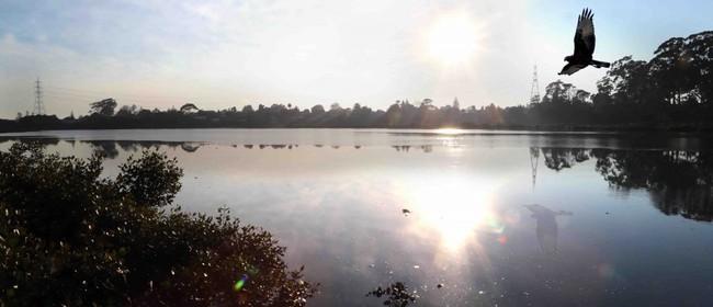 Seaweek - Twilight Walk at Ahuriri Estuary