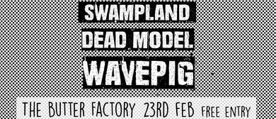 Morepork: Swampland, Dead Model, Wavepig
