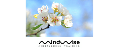 MindWise <em>Day</em> of Mindfulness Retreat