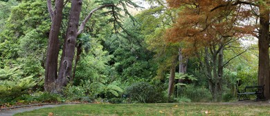 Guided Walk: Autumnal Botanical Exploration