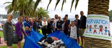 Massive Marlborough Clean-Up: Picton (Seaweek)