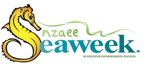 Seaweek - Waitangi Regional Park Beach Clean