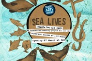 Image for event: Sea Lives - Sea Week