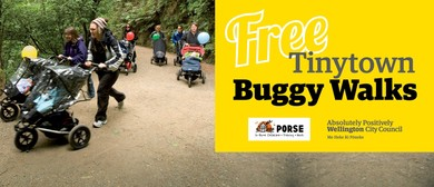 Tinytown Buggy Walk - Houghton Bay