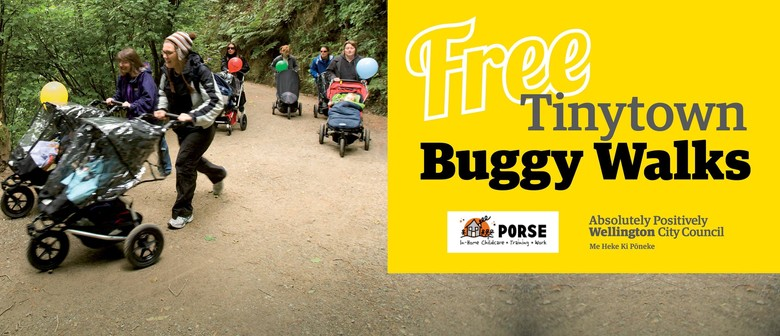 Tinytown Buggy Walk - Houghton Bay