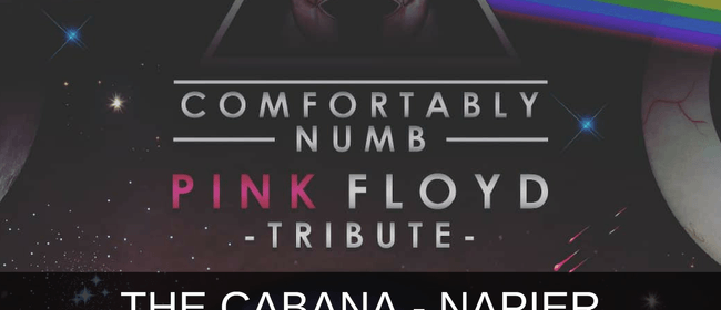 Comfortably Numb: Play Pink Floyds The WALL & More.