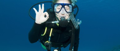 PADI Openwater Diver - Learn to Dive