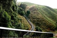 Image for event: Rotorua U3A Forum: Sanctuary Mountain Maungatautari