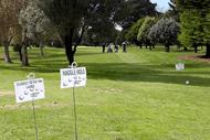 Image for event: Eketahuna School Golf Tournament