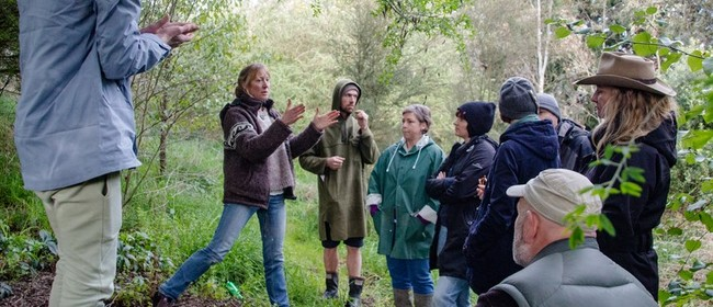 Permaculture Farm and Food Forest Tour