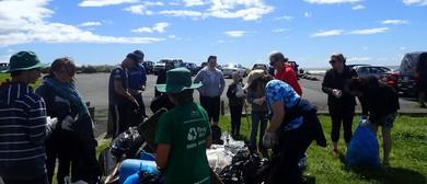 Seaweek - Taranaki Conservationists East End – Beach Clean
