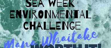 Seaweek - Environmental Challenge