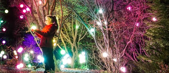 LUMA Southern Light Project