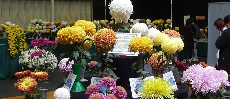 Waikato Chrysanthemum Society