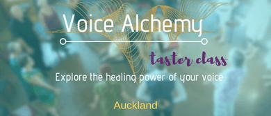 Voice Alchemy Taster Class