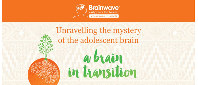 Unravelling the Adolescent Brain