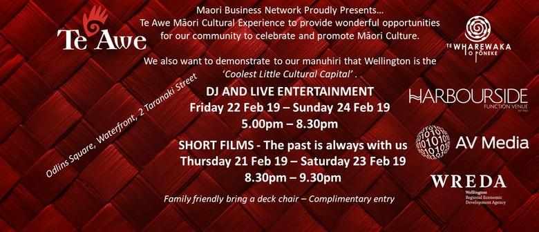 Te Awe Māori Business Network Cultural Experience