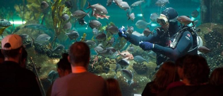 National Aquarium of New Zealand Celebrates Children's Day