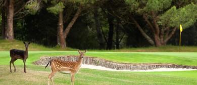 Ladies Golf Weekend Away: CANCELLED