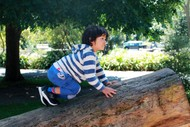 Image for event: Pop-up Nature Play Space