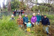 Riverlea Environment Society Inc - Restoration Project