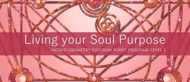 Fulcrum Point Sacred Geometry Healing Program