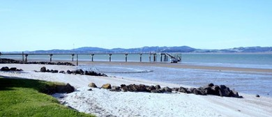 Kaipara River and Harbour Cruise