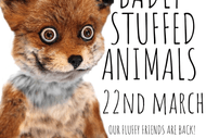 Image for event: Badly Stuffed Animals