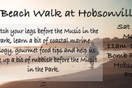 Image for event: Beach Walk at Hobsonville