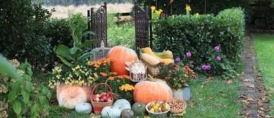 Autumn Garden Festival & Market