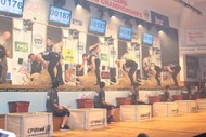 Image for event: New Zealand Shearing Championships