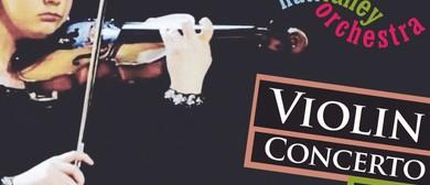 Violin Concerto Plus