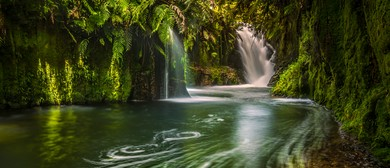 Kaimai Waterfall Workshop