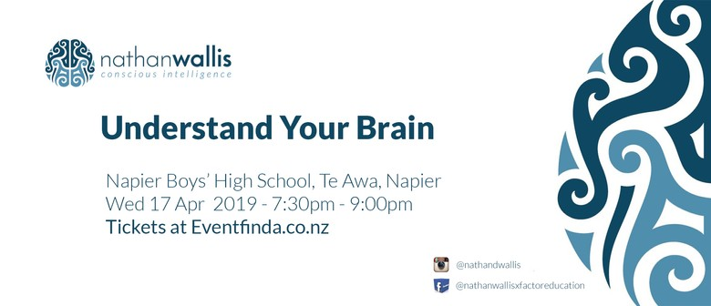 Understand Your Brain - Napier