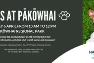 Paws at Pākōwhai 2019