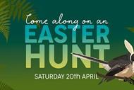 Image for event: Easter Hunt
