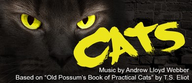 Cats: SOLD OUT