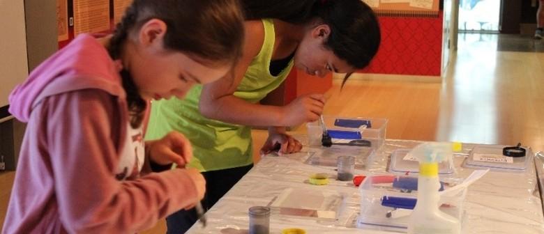 SOCO Workshop: Latent Fingerprint Evidence