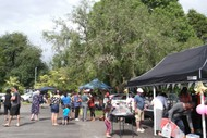Image for event: Car Boot Market Day