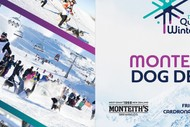 Image for event: Monteith's Dog Derby