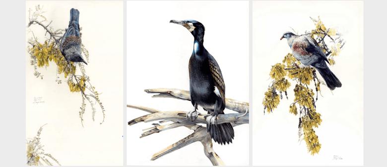 Niels Meyer-Westfeld Exhibition Land of Birds