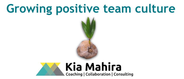 Growing Positive Team Culture - 4 Hour Workshop